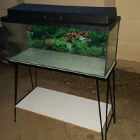 A 3ft fish tank with the steel stand and canopy