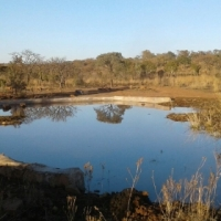 22ha game farm for sale