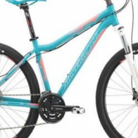 Ladies Silverback mountain bike for Sale for sale  Centurion