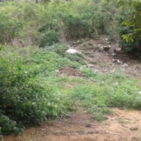 land for sale at illovu A section