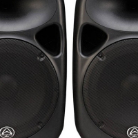 Wharfedale Titan 15D Passives for sale with Hybrid B1600 amplifier like new!