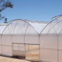 Horticulture Greenhouse Northern Cape,0604792818,Multispan  greenhouse Upington