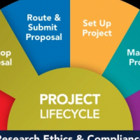 Dissertations and Projects Proposals