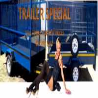 Special 3meter trailer, R10999