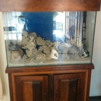 Marine Fish Tank in cabinet