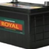 Royal Delkor NS70 65AH Deep Cycle Battery