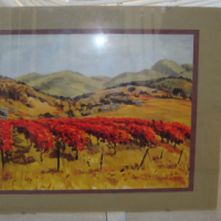 2 X glass picture frames with metal clips - one with a David Botha print for sale  Southern Suburbs