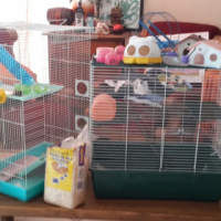 2 x big hamster cage