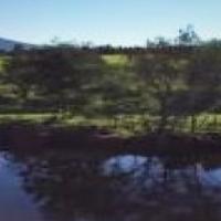 Plaas Skuilhoek – 9.7905 Hektaar T9069-89 Geduldsrivier