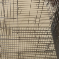 African Grey Parrot Cage Deluxe