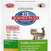 Hills Science Plan Dog & Cat Foods