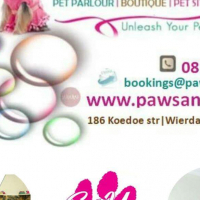 Best doggy parlour in town & we groom cats too... and other furry pets