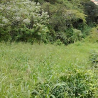 Vacant Land for sale in Durban near Newlands, Durban kwazulu natal, kzn. Buy in this land Now!