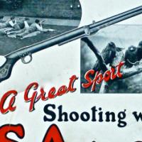 any old air rifles pellet guns