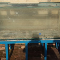 fish tank 1.8m in length