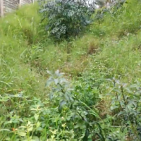 Vacant Land for sale in Durban near Westville student Ukzn, Durban, kwazulu natal, kzn. Buy in this