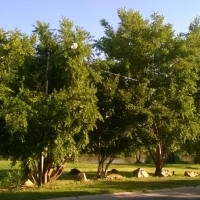 river property  for sale in Parys