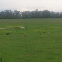 Farm for sale Heilbron/ Oranjeville