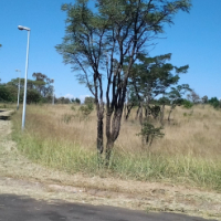 Stands for sale Fairview Crescent Cullinan