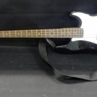 Guitar SX Standard Series