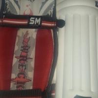 SM Wrecker Cricket pads