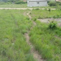 Big piece of land for sale in Mgababa
