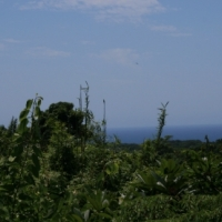 Zoned Land for Development