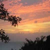 """Last Minute Special  : Join the """"Friends"""" of Hilltop-Durban Guesthouse"""