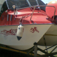 Ski Boat- Zulu Cat (16.2 ft)  Seaworthy