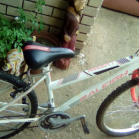 Ladies mountain bike for sale  South Africa