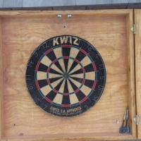Pig hair dart board and cabinet as new -