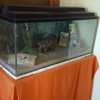 Large fish tank with accessories and stand.
