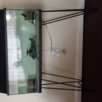 fish tank for sale 150l
