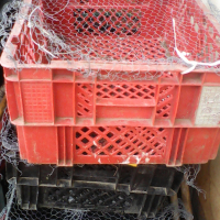 Crates for travelling chickens