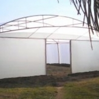 Vegetable greenhouse tunnels