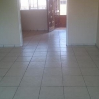 Rosebank bachelor flat to rent