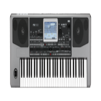 KORG PA 900  61-KEY PROFESSIONAL ARRANGER