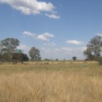5 ha, ample water, good grazing