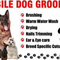 Pretty Paws Mobile Dog Grooming
