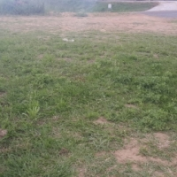 Vacant land/plot for sale in lovu