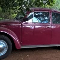 1976 1600 VW Beetle - Rebuilt