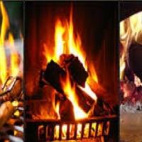 BRAAI / FIREWOOD.....Sekelbos, the Best Choice