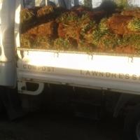 LM Lawn deliveries