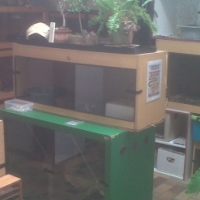 Reptile cage with heater pad and light