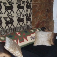 Fully Furnished Garden Flat TO LET In Wingate Park, Pretoria East, For Only R7,920p/m
