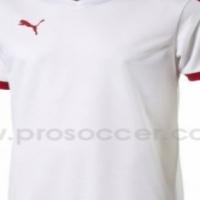 Puma Pitch Soccer Shirts (14 Pack