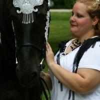 Incredible Friesian horse