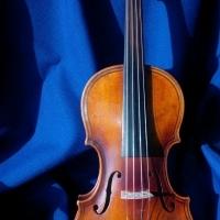 Maggini Violin For Sale