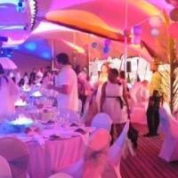 Successful Event / Wedding  decor company for sale