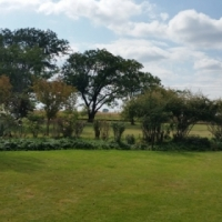 Plot (almost) in Potchefstroom